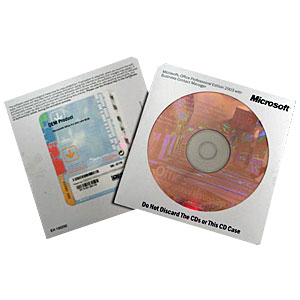 ms office 2003 professional